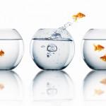 Change Management | 5 Keys to Managing Change